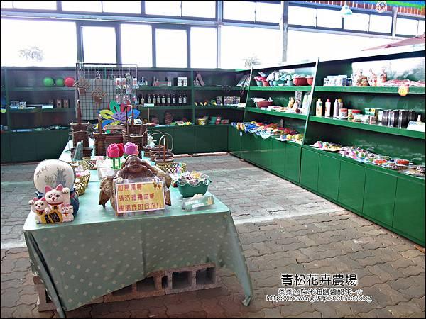 2011-1122-桃園-青松花卉農場 (22)