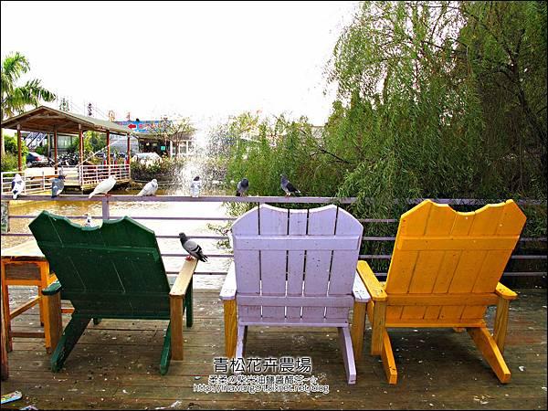 2011-1122-桃園-青松花卉農場 (38)
