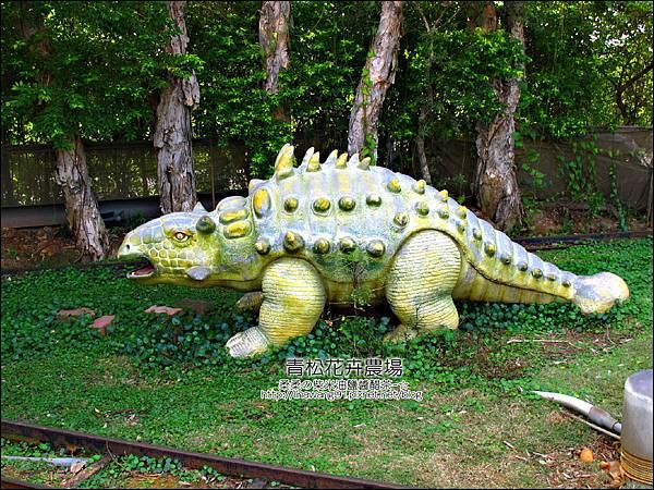 2011-1122-桃園-青松花卉農場 (41)