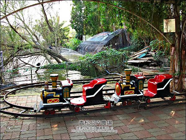 2011-1122-桃園-青松花卉農場 (42)