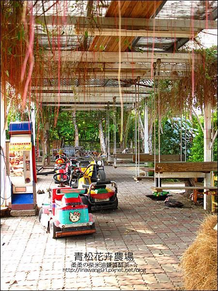 2011-1122-桃園-青松花卉農場 (43)