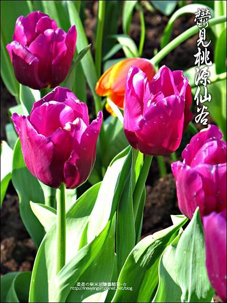 2012-0212-桃園-復興-桃源仙谷 (12)
