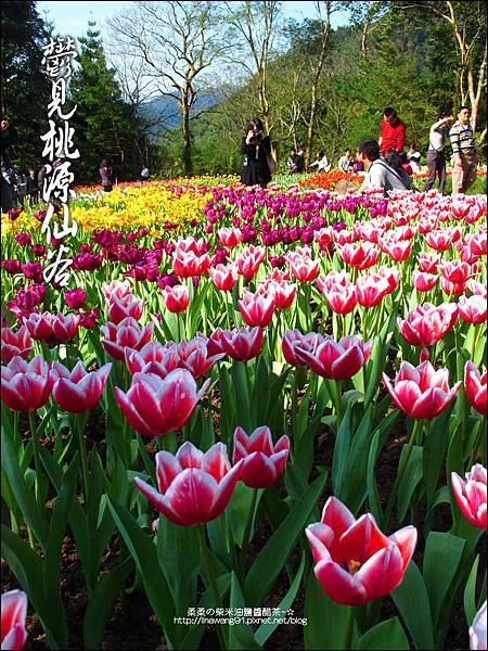 2012-0212-桃園-復興-桃源仙谷 (16)