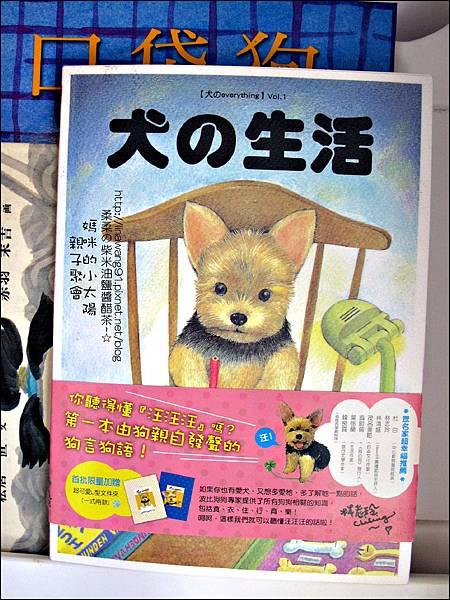 2011-0420-小太陽-日本-柴犬 (1)