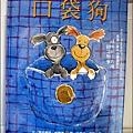 2011-0420-小太陽-日本-柴犬 (3)