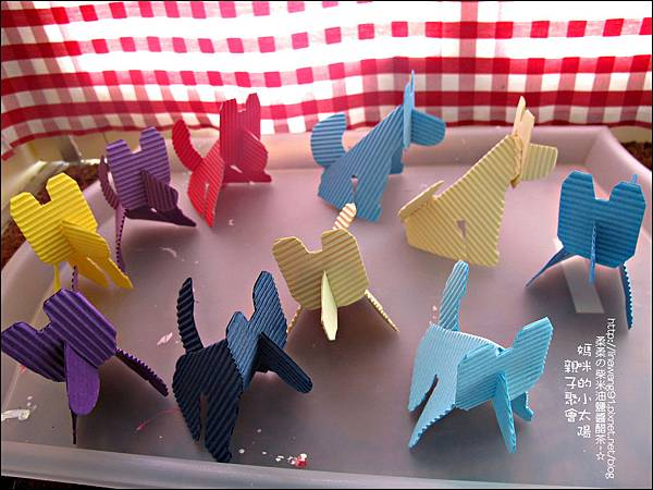 2011-0420-小太陽-日本-柴犬 (4)