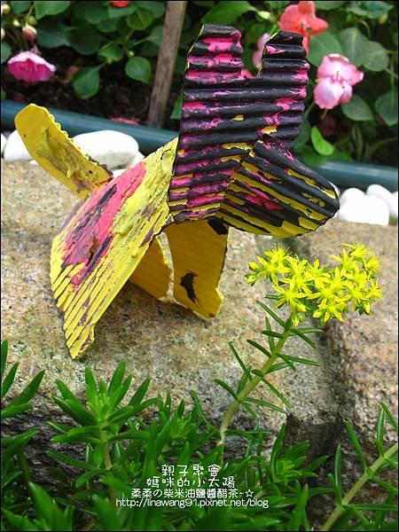 2011-0420-小太陽-日本-柴犬 (14)