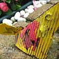 2011-0420-小太陽-日本-柴犬 (16)
