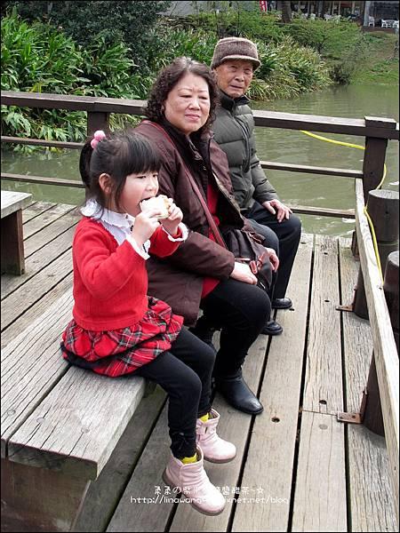 2012-0301-新竹麗池-蒲公英 (1)