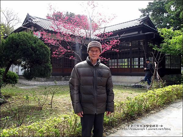 2012-0301-新竹麗池-蒲公英 (3)