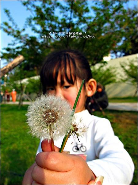2012-0301-新竹麗池-蒲公英 (22)