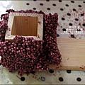 2011-0516-小太陽-捷克-蘑菇3-6 (9)