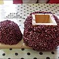 2011-0516-小太陽-捷克-蘑菇3-6 (10)