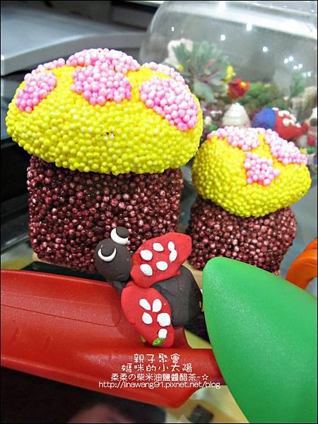 2011-0516-小太陽-捷克-蘑菇3-6 (13)