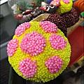 2011-0516-小太陽-捷克-蘑菇3-6 (14)