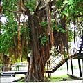 2011-0917-英商德記洋行-台南安平樹屋 (13)