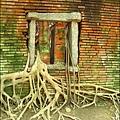 2011-0917-英商德記洋行-台南安平樹屋 (20)