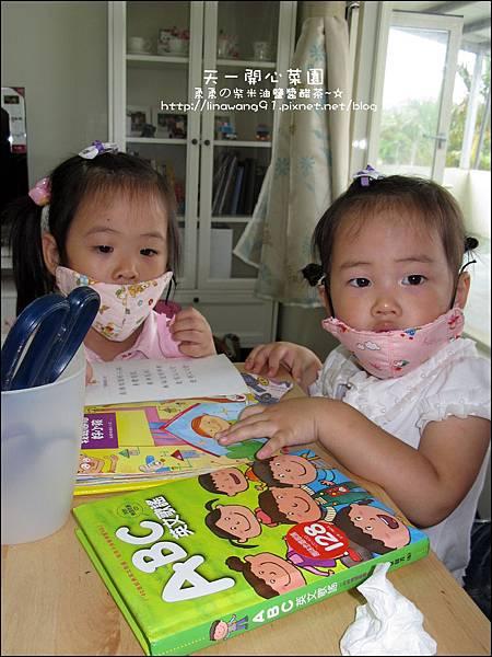 2012-0528-天一開心菜園-手作DIY小包包 (8)