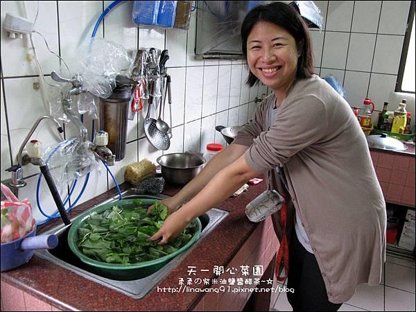 2012-0528-天一開心菜園-DIY蔬菜盆栽 (1)