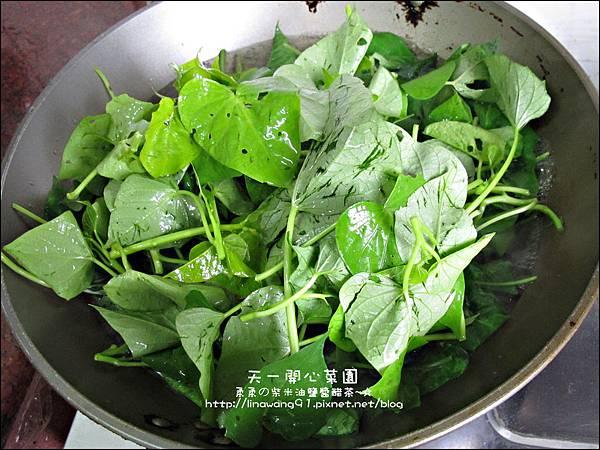 2012-0528-天一開心菜園-DIY蔬菜盆栽 (2)