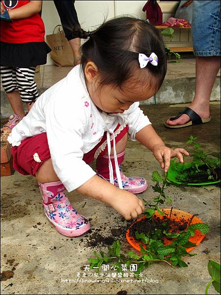2012-0528-天一開心菜園-DIY蔬菜盆栽 (7)