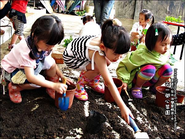 2012-0528-天一開心菜園-DIY蔬菜盆栽 (9)