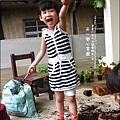 2012-0528-天一開心菜園-DIY蔬菜盆栽 (14)