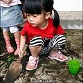 2012-0528-天一開心菜園-DIY蔬菜盆栽 (15)