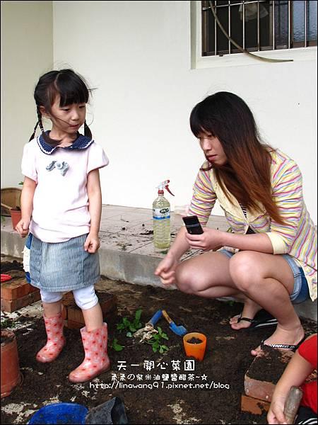2012-0528-天一開心菜園-DIY蔬菜盆栽 (16)