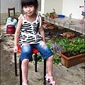 2012-0528-天一開心菜園-DIY蔬菜盆栽 (17)