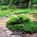 2012-0528-天一開心菜園-假日農夫體驗營 (15)