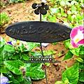 2012-0528-天一開心菜園-假日農夫體驗營 (17)