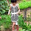 2012-0528-天一開心菜園-假日農夫體驗營 (20)