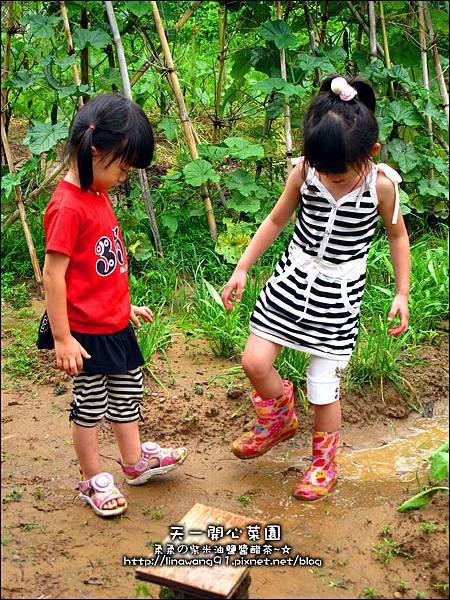 2012-0528-天一開心菜園-假日農夫體驗營 (22)