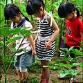 2012-0528-天一開心菜園-假日農夫體驗營 (23)