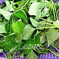 2012-0528-天一開心菜園-假日農夫體驗營 (25)