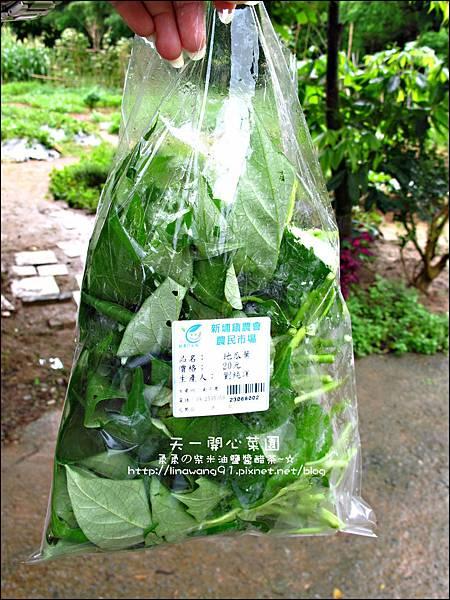 2012-0528-天一開心菜園-假日農夫體驗營 (27)