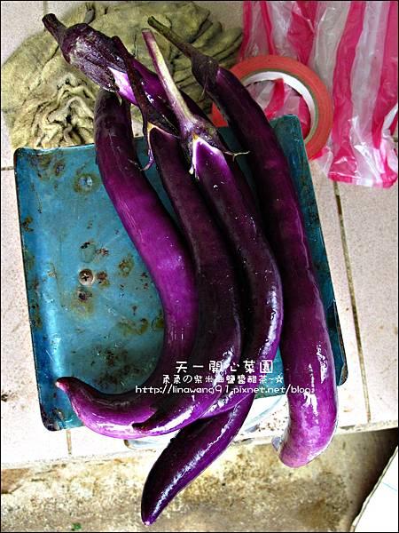2012-0528-天一開心菜園-假日農夫體驗營 (29)