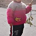 大陸-青島-樹枝是我的玩具