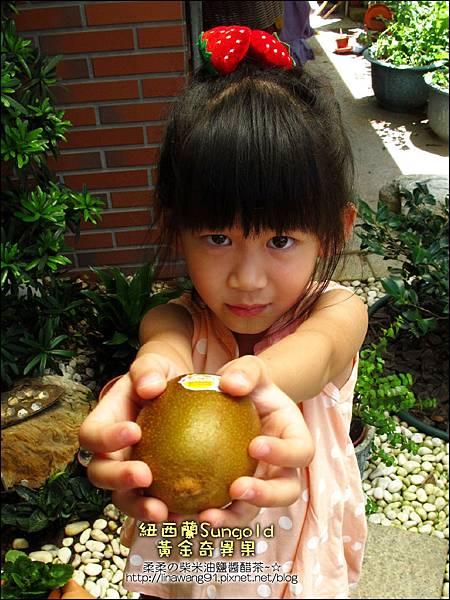 2012-0714 -紐西蘭Sun Gold黃金奇異果
