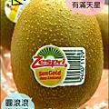 2012-0714 -紐西蘭Sun Gold黃金奇異果 (2)