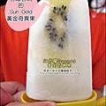 2012-0714 -紐西蘭Sun Gold黃金奇異果 (25)