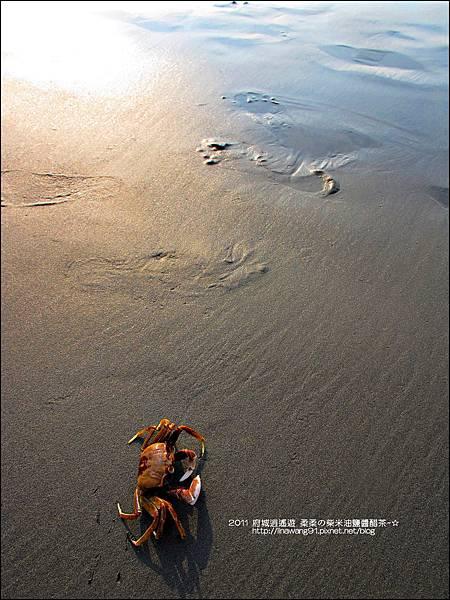 2011-0917-台南-七股瀉湖 (25)
