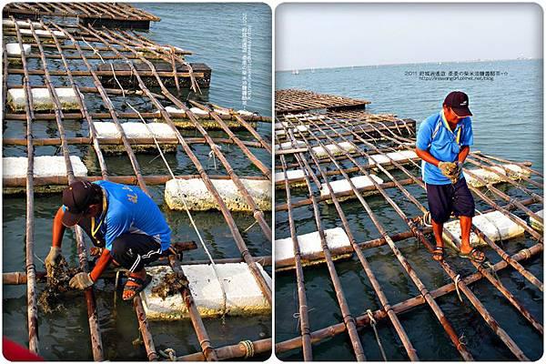 2011-0917-台南-七股瀉湖 (40)