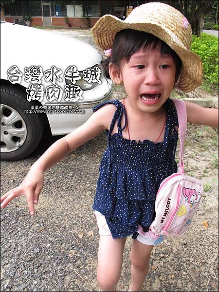 2012-0629-苗栗後龍-台灣水牛城-玩水烤肉 (34)