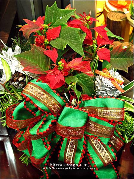 2012-1218-聖誕紅組合盆栽 (10)