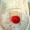 2012-1218-可愛造型便當-聖誕老公公 (2)