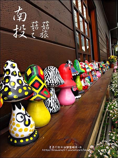 2012-0420-豐年靈芝菇類生態農場 (2)