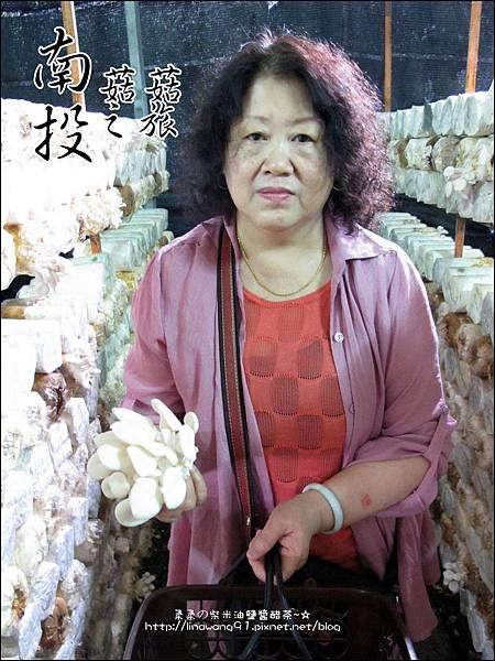 2012-0420-豐年靈芝菇類生態農場 (12)