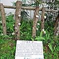 2012-0420-豐年靈芝菇類生態農場 (33)